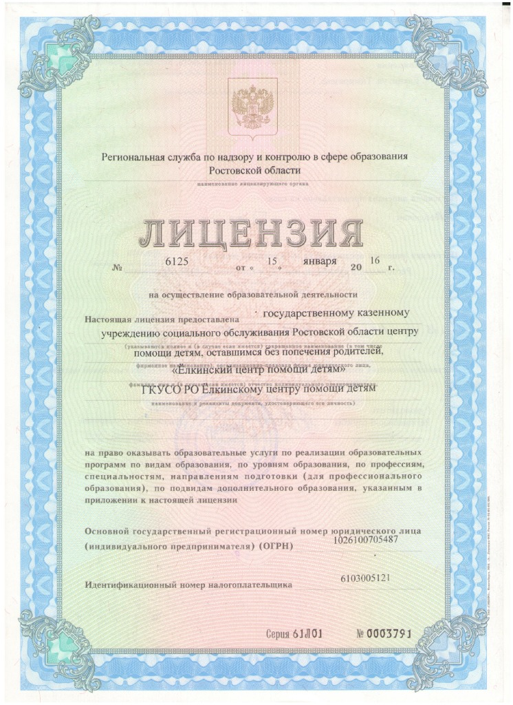 thumbnail of Ёлкинский ЦПД Лицензия