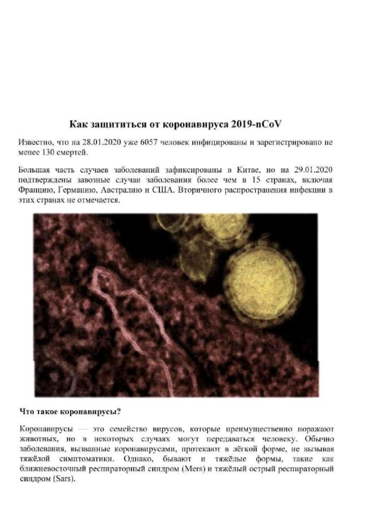 thumbnail of ПАМЯТКА КОРОНАВИРУСНОЙ